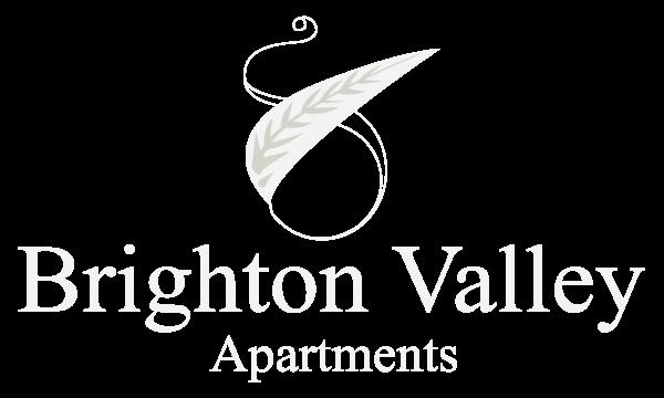 brighton valley apts apartments in nashville tn
